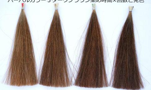 ハーバルカラー5ダークブラウン白髪染め