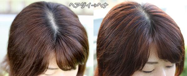ややダメージありの茶髪はヘナでどう染まる?写真で検証