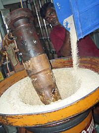 ティルテェル(インド古式冷搾ごま油)