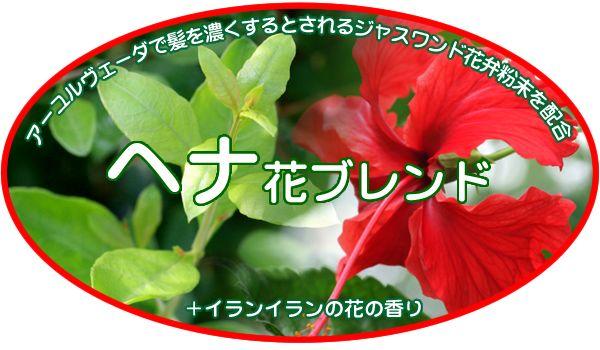 アーユルヴェーダで髪を濃くするとされるジャスワンド花弁粉末を配合、心地よい香りを添えるイランイラン油を配合 ヘナ花ブレンド