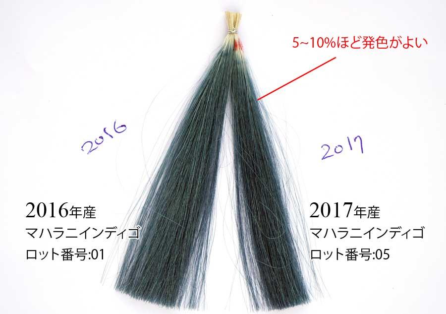 インディゴの染毛力の比較